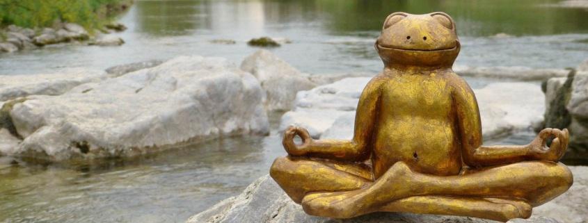 lotus frog pain free