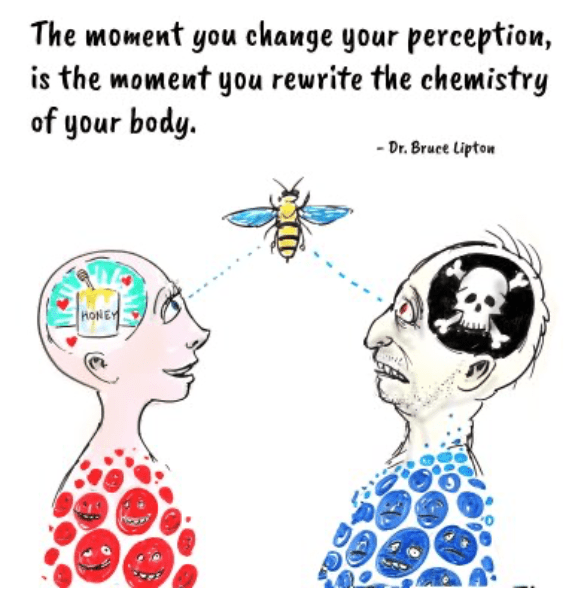 perception is everything
